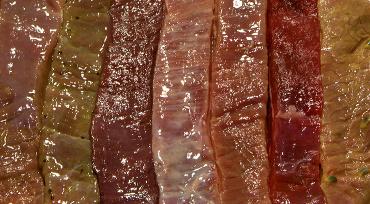 Enzymer og syre som kødmørner