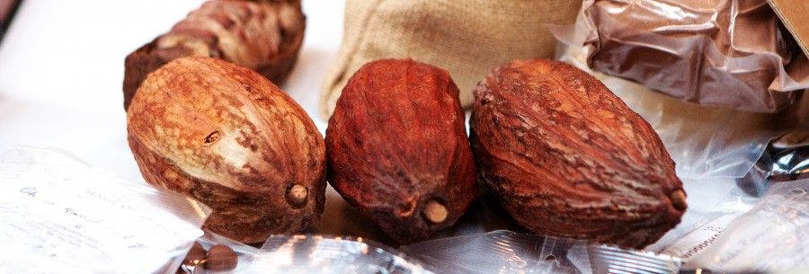 tørrede Kakao frugter