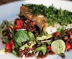 Varmrøget torsk m. jorbær/beluga-linse salat