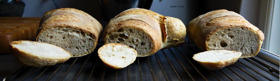 De 3 langtidshævede brød. Fra venstre: tørgær, almindeligt gær, øko-gær