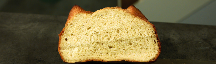 korttidshævet brød på tørgær