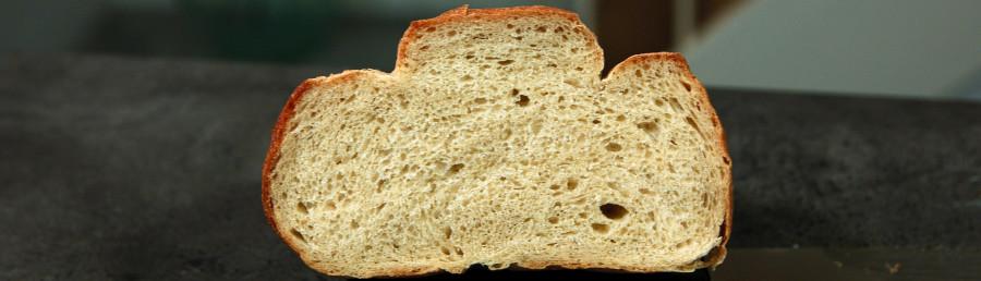 korttidshævet brød på almindelig gær