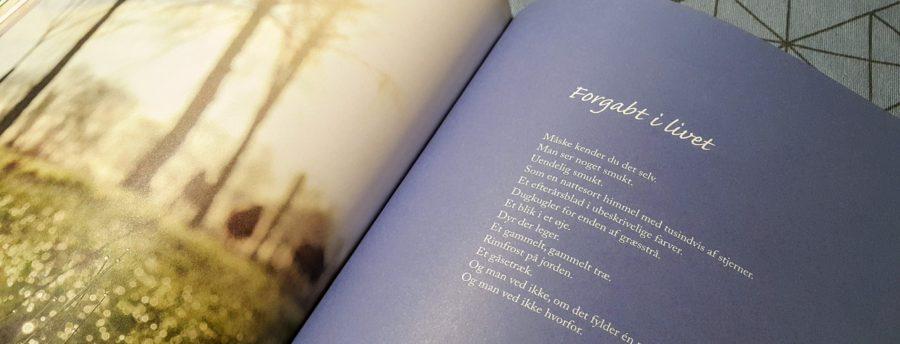 et af de mange gode vers i bogen